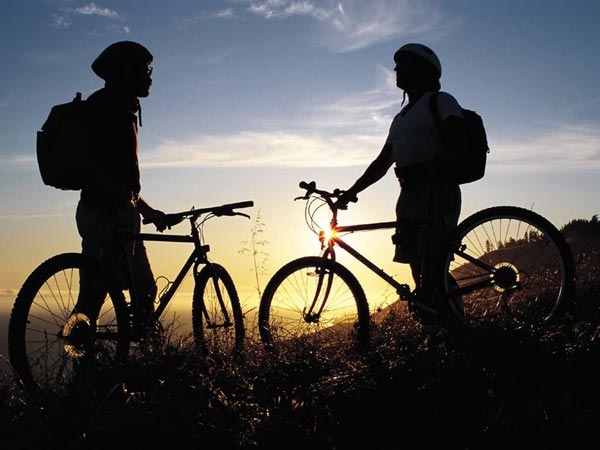 Two Mountain Bikers